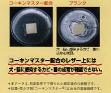 コーキンマスター配合のレザー上には犬・猫に感染するカビ・菌の成育が確認できない。