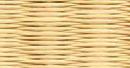 02黄金色